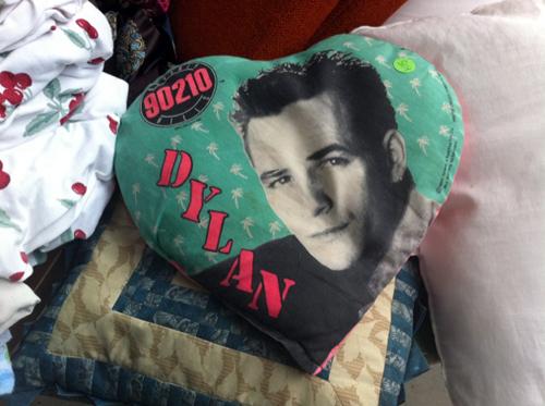 Dylan pillow