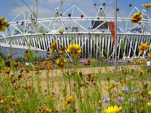 Olympic flowers 02