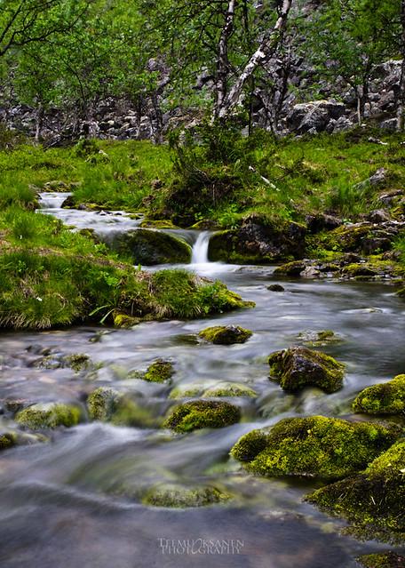 Creek   KEVO