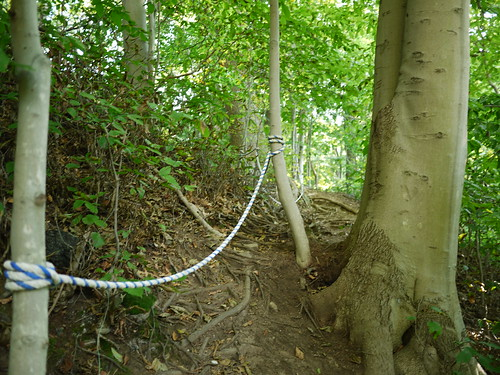more rope guides