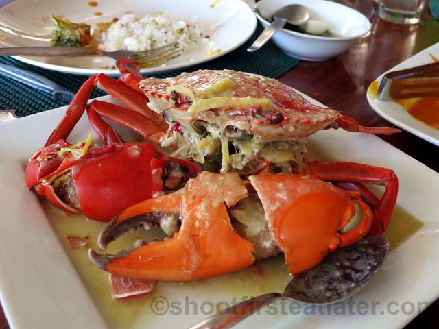 coco crab P650