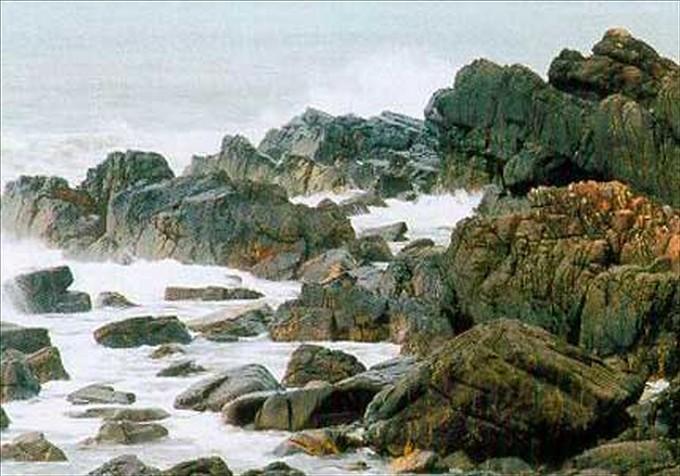 7608519690 325e588831 b Bãi Rạng Đà Nẵng   bãi đá biển Đà Nẵng đẹp mê hồn