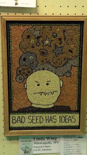 MN Fair Seed Art