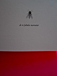 Iain Banks, La fabbrica delle vespe, Meridiano Zero 2012. Progetto grafico: Meat collettivo grafico; realizz. graf.: Nicolas Campagnari. Frontespizio (part.), 2