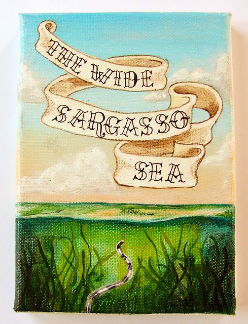 The Wide Sargasso Sea