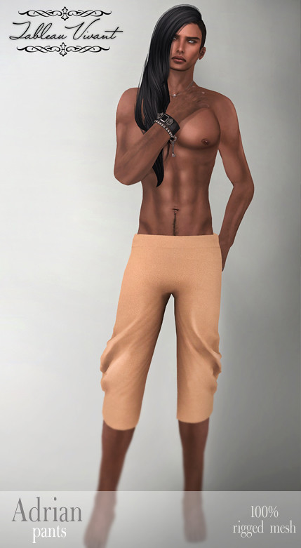 ~Tableau Vivant~ Adrian pants for faMESHed