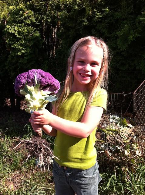Sadie with purple cauliflower