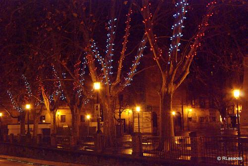 Árboles de la Plaza de Recoletas con decoración navideña
