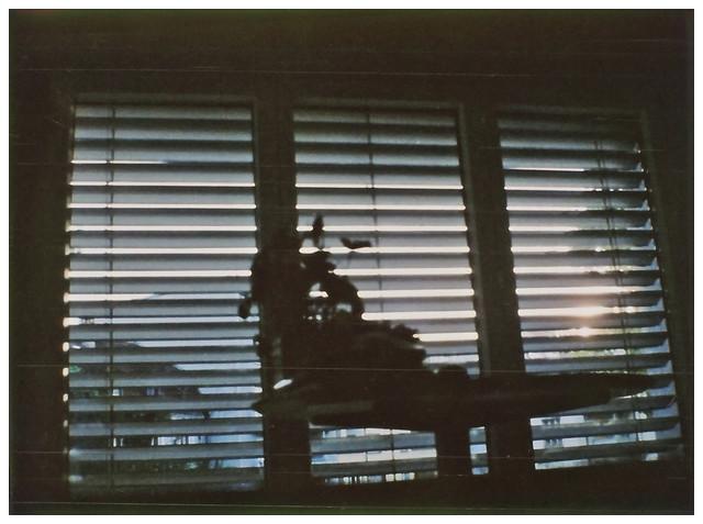 """""""Window"""" - Kodak Petite + Fujifilm instax mini film"""