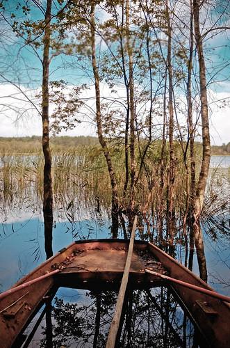 wildswamp by visualterrorist