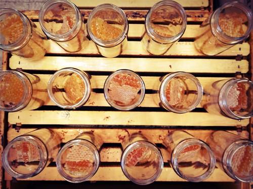 JW Marriott Comb Honey Jars