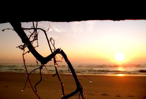 SAM 5924 The Glory of a Damp Beach Dawn
