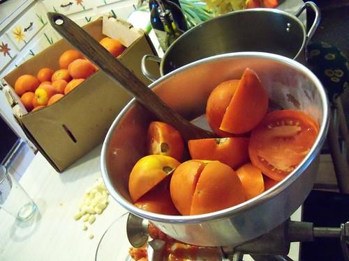 pasta sauce tomatoes