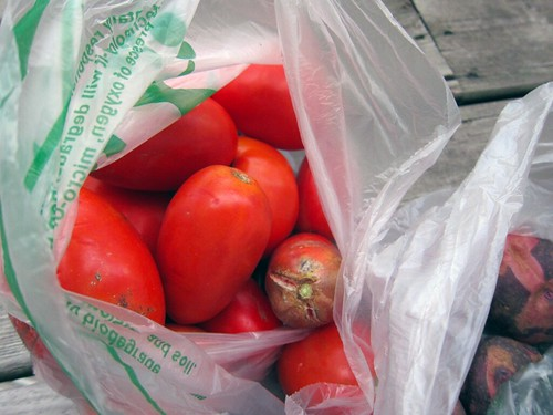 Bright red tomatoes in a plastic bag.