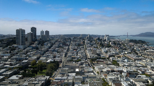 Coit Tower View.