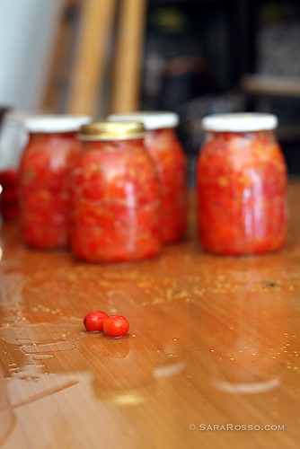 Two tomatoes escape canning in Italy