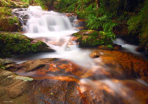 Cachoeira em São Bonifacio SC