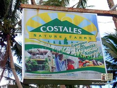 Costales in Laguna