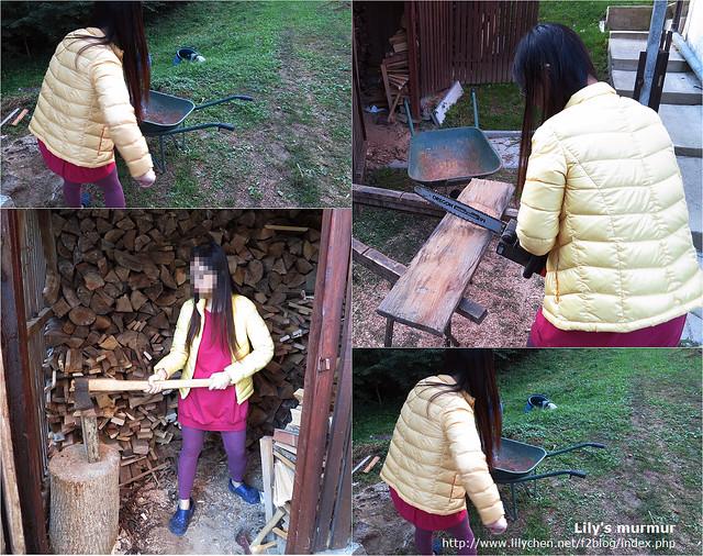 大致上要做的工作有整地、鋸木、砍木、清理木屑等。但我現在不適合做粗活,所以也只是做做樣子,哈!