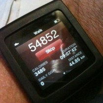 Walkabout: 54,852 steps, 44.85 KM, 3,485 calories