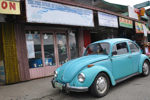 On the Road: Beetle