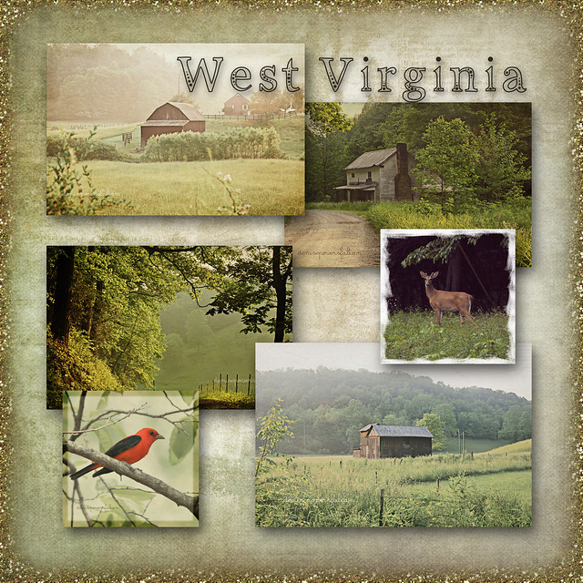 West Virginia Collage