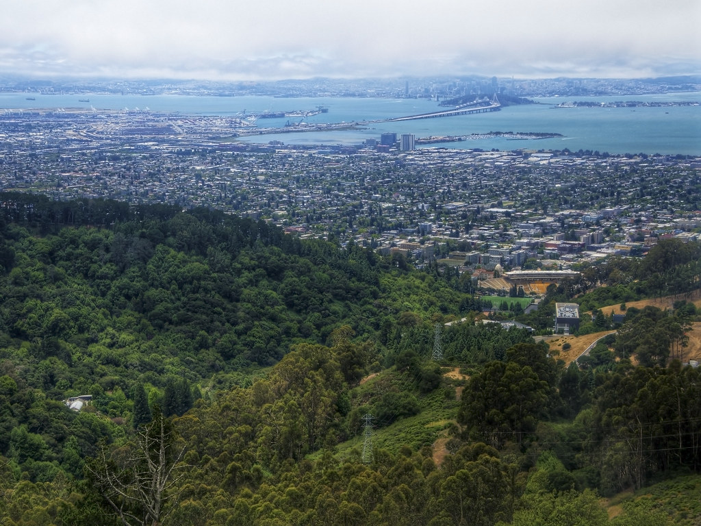 Berkeley Balance