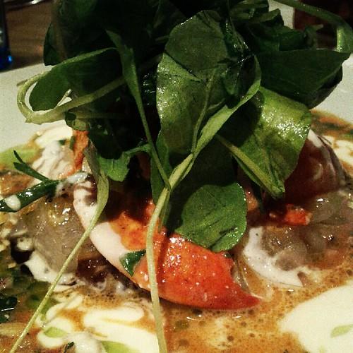 Lobster dish at Le Comptoir