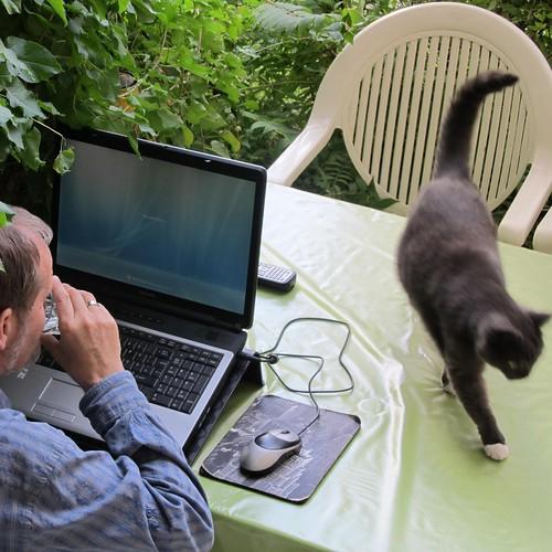 outdoor meeting