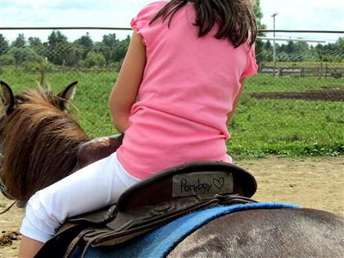 Love you, Ponyboy!