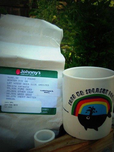 20120916. Platning cover crops, drinking coffee.