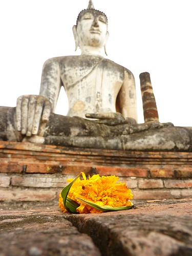 Yellow flower in front of Buddha