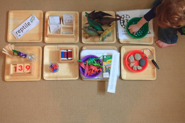 All of our trays for dinosaur week.