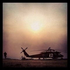 Black hawk sunset