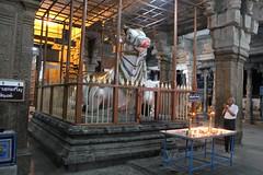 In Shiva Temple