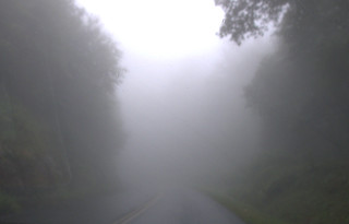 Parkway Fog