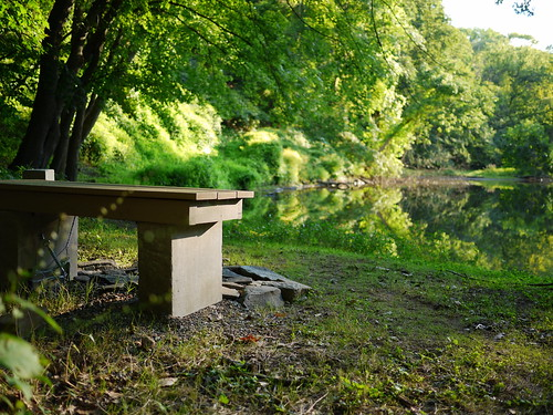bench and river