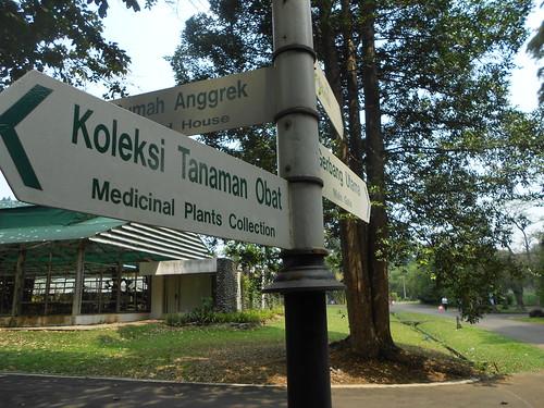 Petunjuk Jalan di Bogor Botanical Garden by Fadli Muhamad Akbar Sa'un