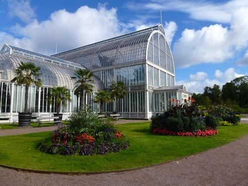 Greenhouse, Trädgårdsföreningen