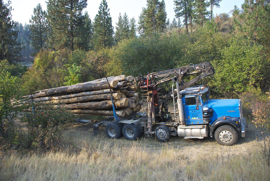 Truck load of firewood logs