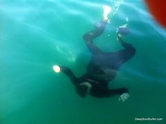 SharSkin Wetsuit In The Water