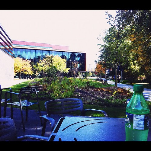It's nice right now... #campus
