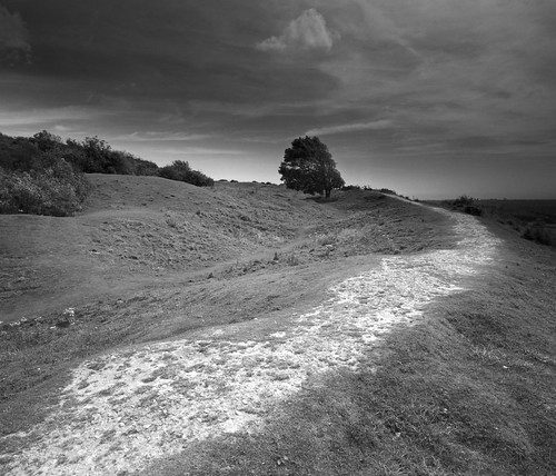 Cissbury Ring by tubb