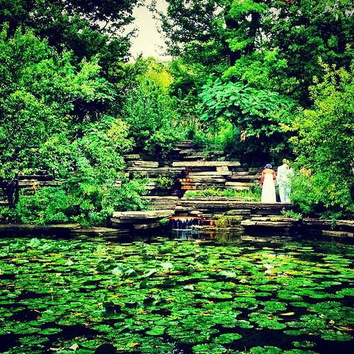 Lily Pond wedding