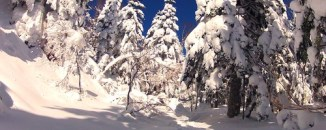 Mt. Yakedake 2012/02/19