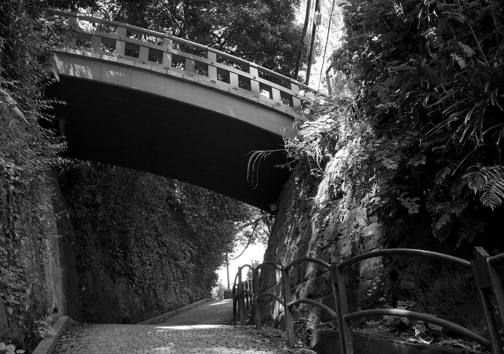 Overarching bridge