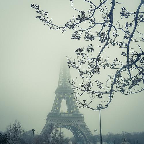 The Iron Lady and Mister Tree (Tour Eiffel, Paris) - Photo : Gilderic