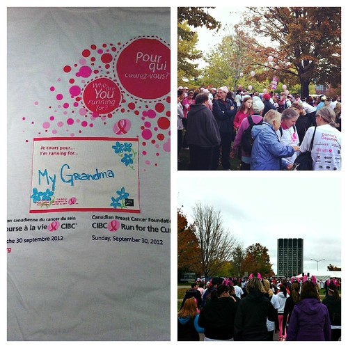 run for the cure collage