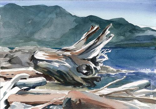 Cates Beach (3)