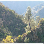 Los Padres National Forest, Manzana Narrows Trail